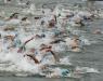 Maratonas Aquáticas - Porto Belo abre circuito nacional de Maratonas